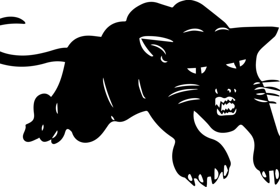 black panther-01-01